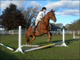 horse riding student in boarding school